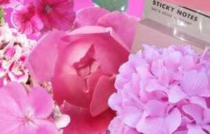 Image of flowers with note attached saying let's stick together