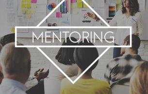 Mentoring opportunity 2017