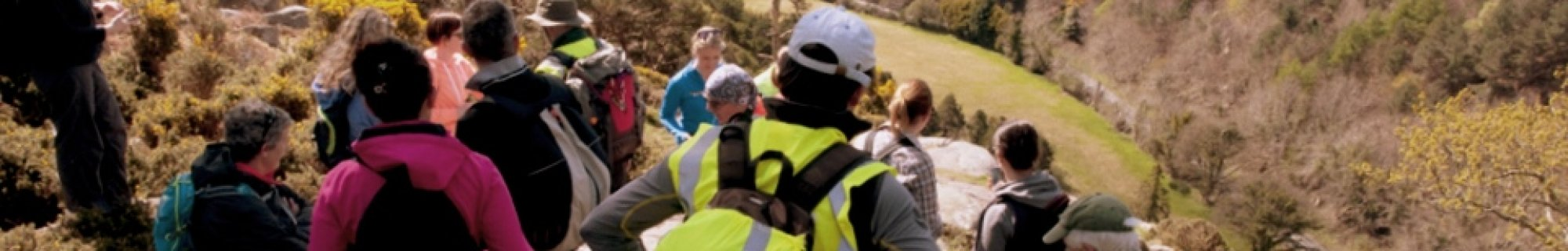Image from Dublin Mountains Partnership Walk
