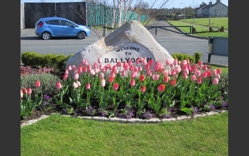 Entrance to Ballyogan Estate