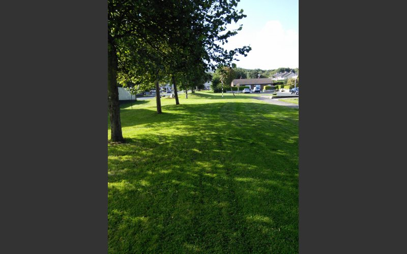 Green area with trees