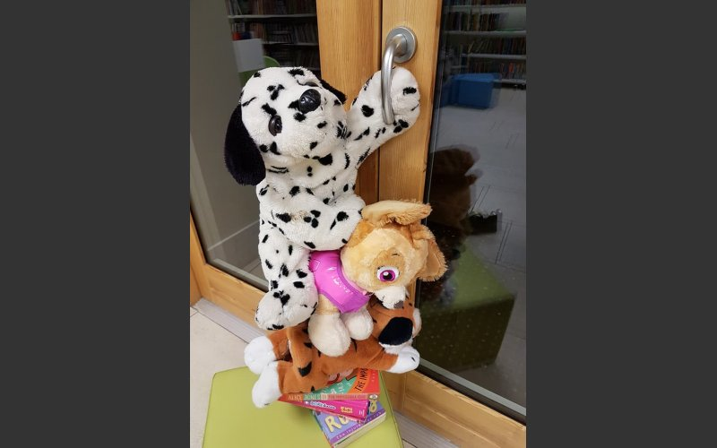 Teddies trying to escape!