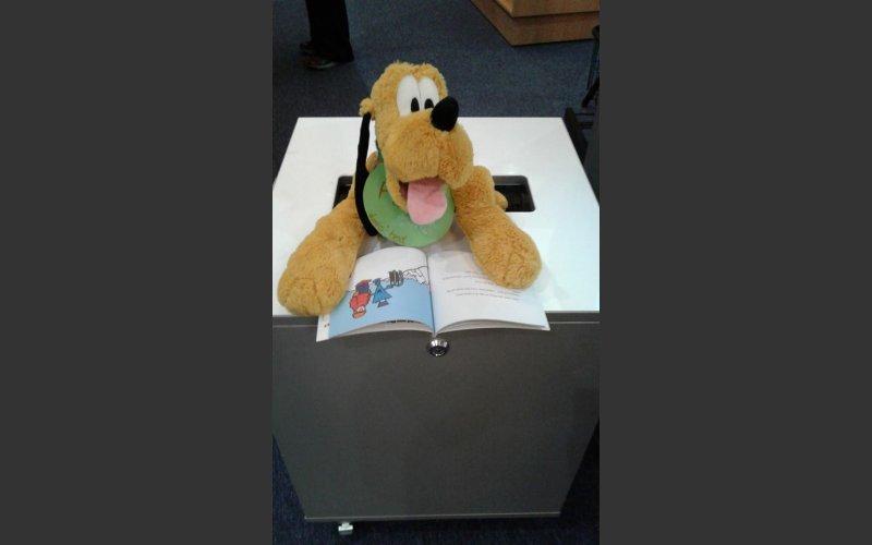 Pluto in the book bin