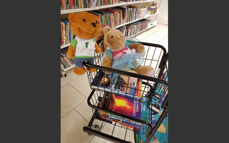 Teddies in a trolley