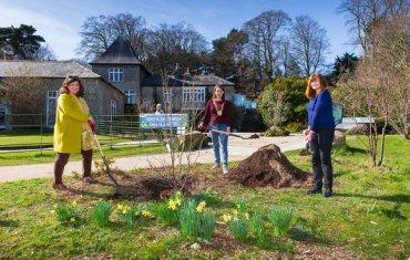 Tree Week 2021 - Planting in Fernhill
