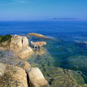 Dun Laoghaire Sea 2